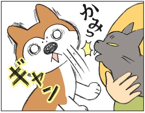動物00480