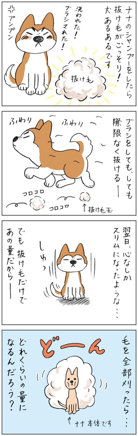 動物18-0152