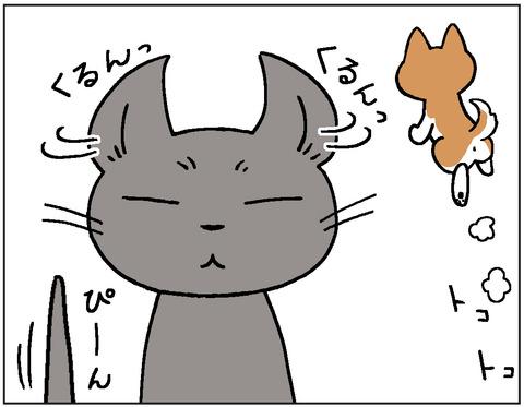 動物00418