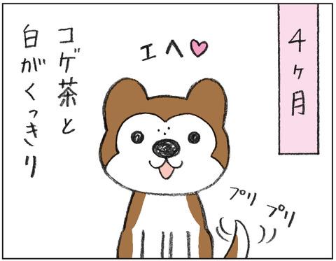 動物00483