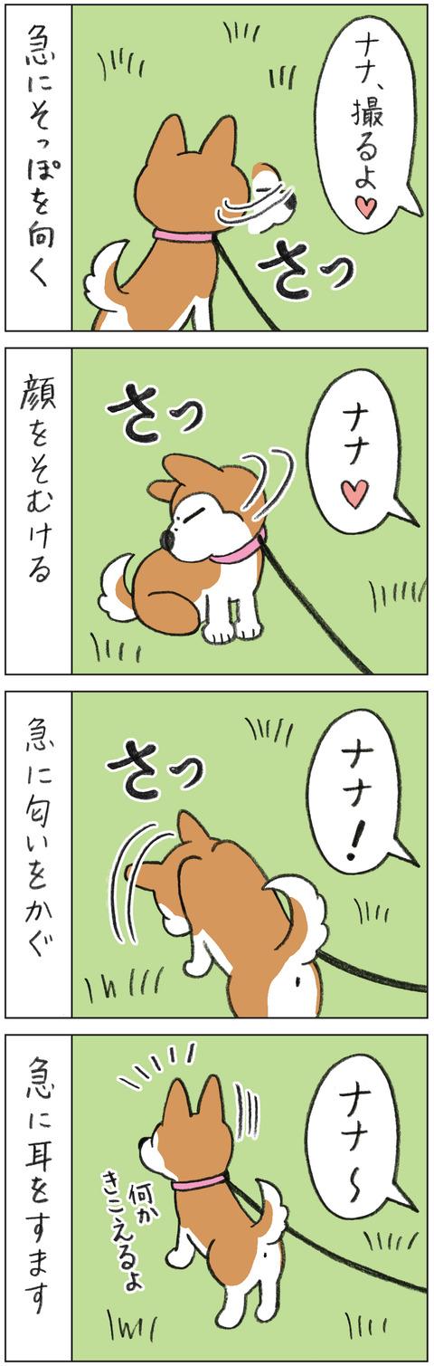 動物18-0139