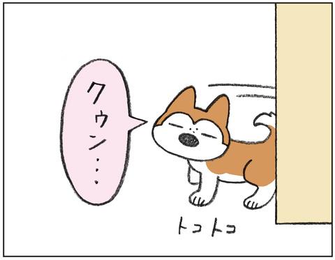 動物00456