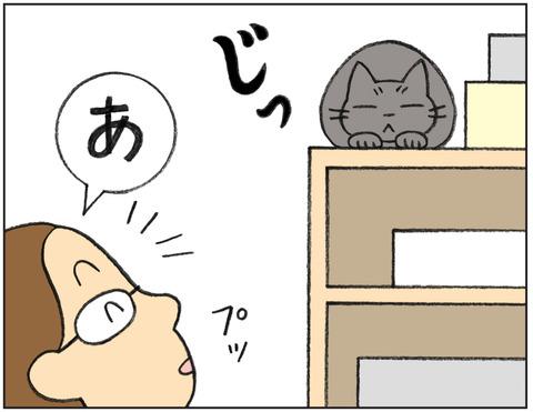 動物00547