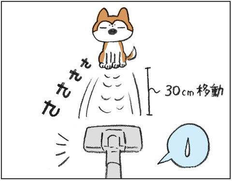 動物00440
