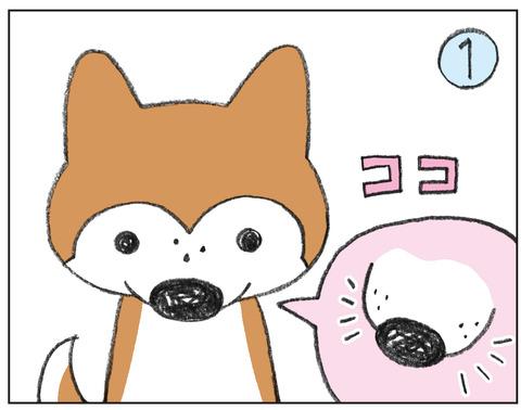 動物00536