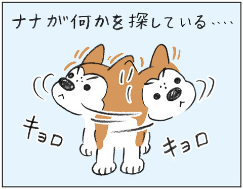 動物00546