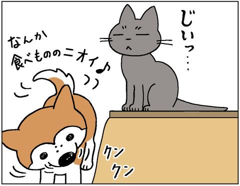 動物00421
