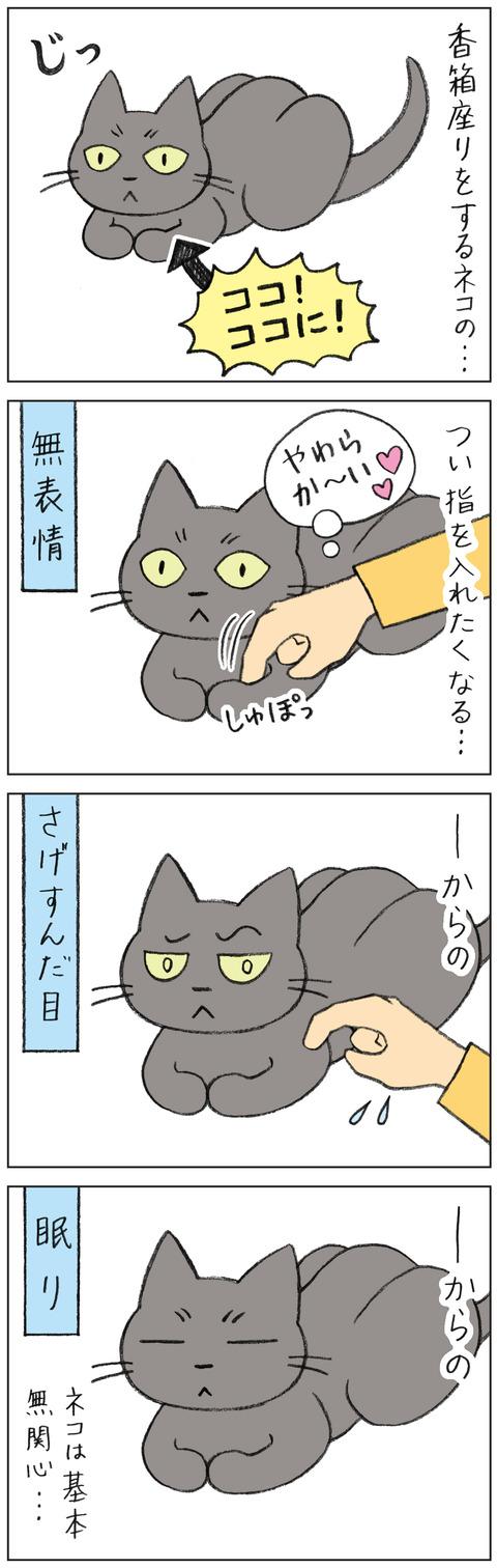 動物19-0159