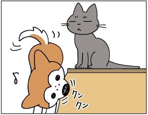 動物00422