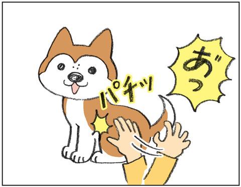 動物00471
