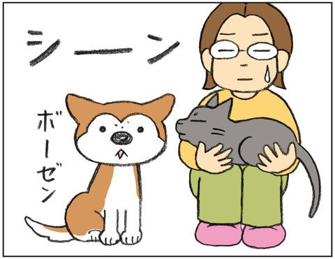 動物00481