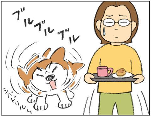動物00494