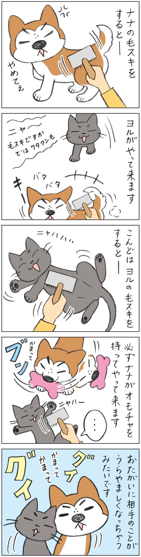 動物18-0141