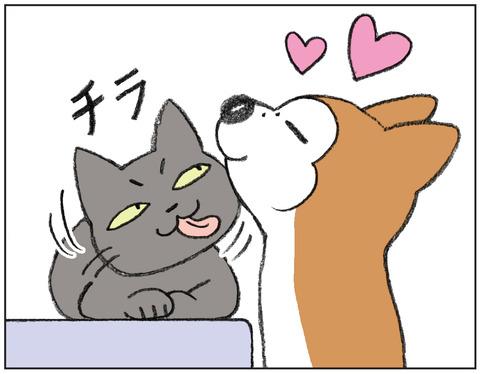 動物00499