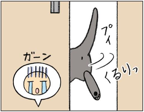 動物00452