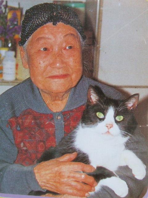 富岡操と猫
