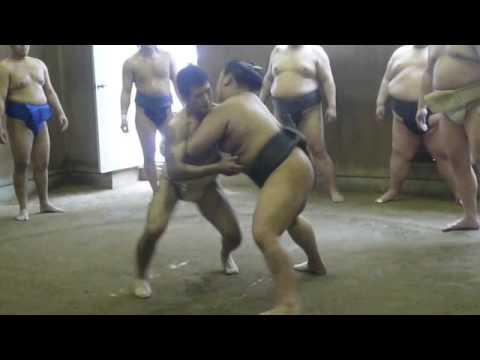 相撲vs柔道