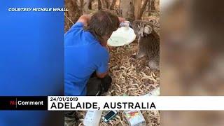 オーストラリア熱波