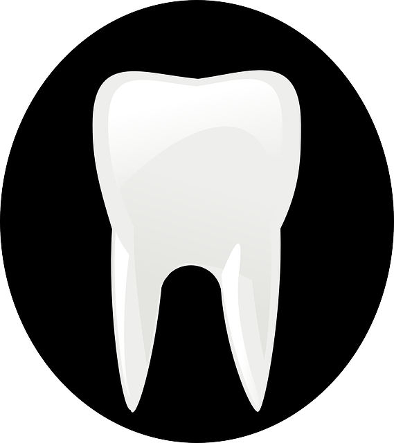 tooth-146674_640