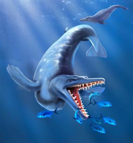 世界最古のクジラ