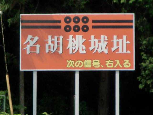 010名胡桃城20100725 CIMG8294