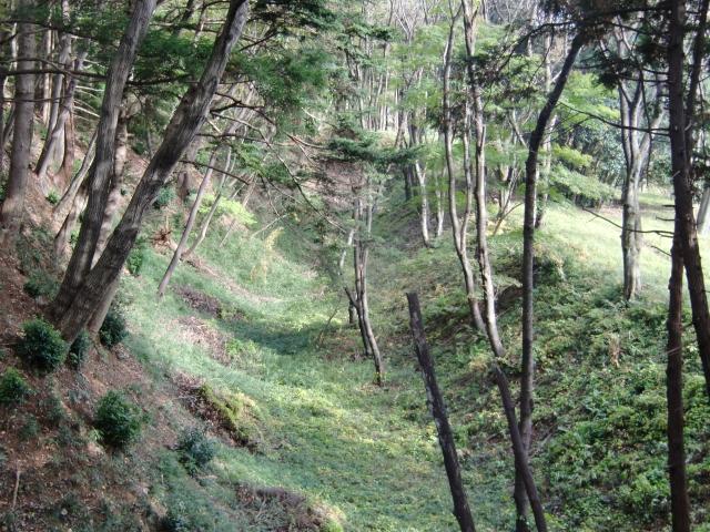 081滝山城20101113 CIMG3901