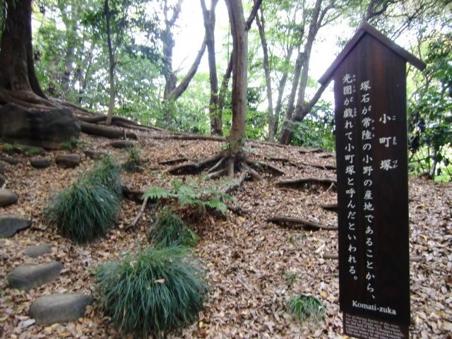 1306水戸藩上屋敷20101121 CIMG4287