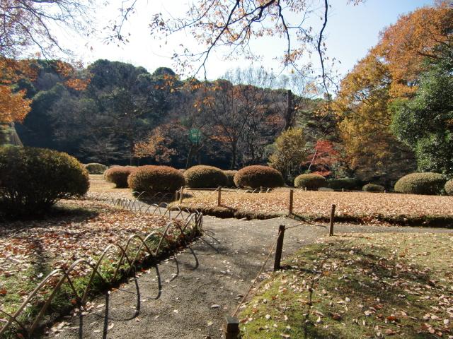 1305彦根藩下屋敷20101212 CIMG5796