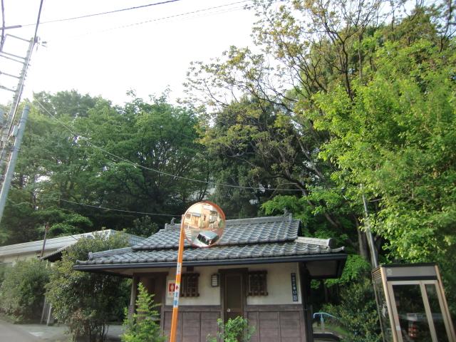 049志村城20110430 CIMG7584
