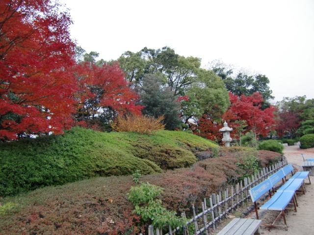 058岡山城20101130 CIMG5539