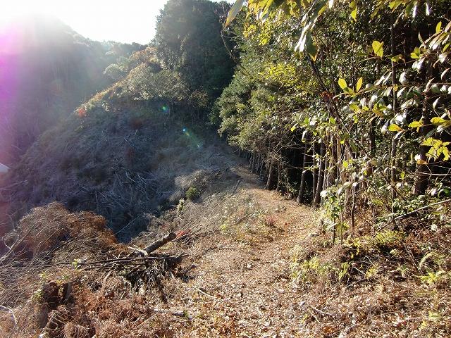 046久礼城20111217 CIMG8359