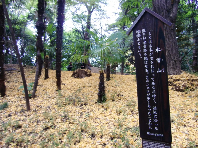 1306水戸藩上屋敷20101121 CIMG4322