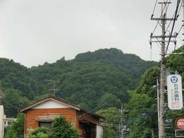 088初沢城20110619 CIMG9544