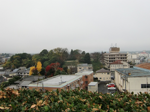 104福知山城20111126 CIMG7458