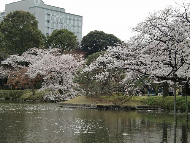 1306水戸藩上屋敷20120407 CIMG1610