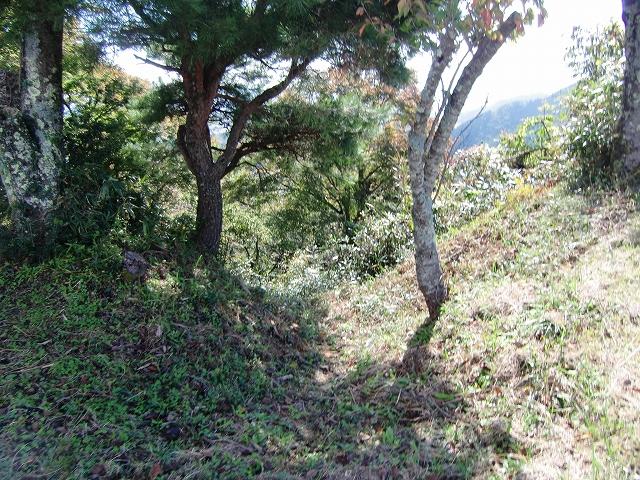020賤ヶ岳城20111024 CIMG6405