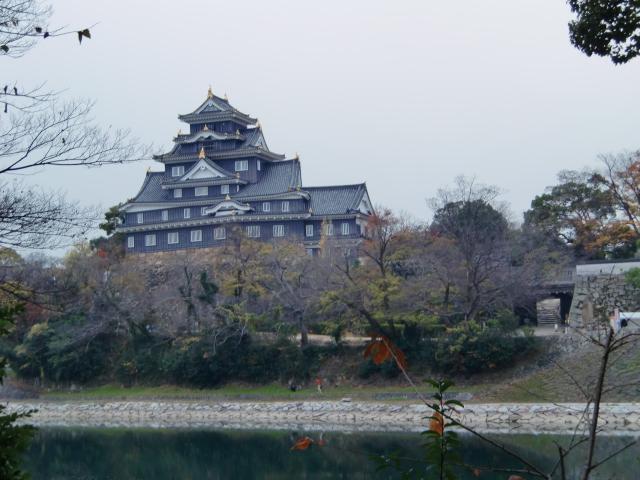 058岡山城20101130 CIMG5558