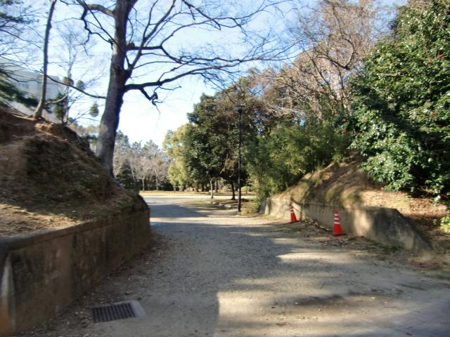 190吉田城20111110 CIMG7206