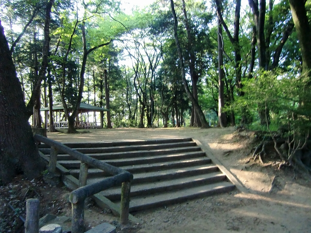 135祇園城20110717 CIMG0468