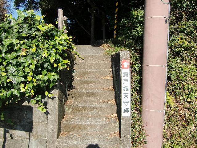 081浦戸城20111218 CIMG8645