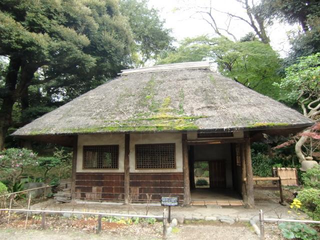 1306水戸藩上屋敷20101121 CIMG4304