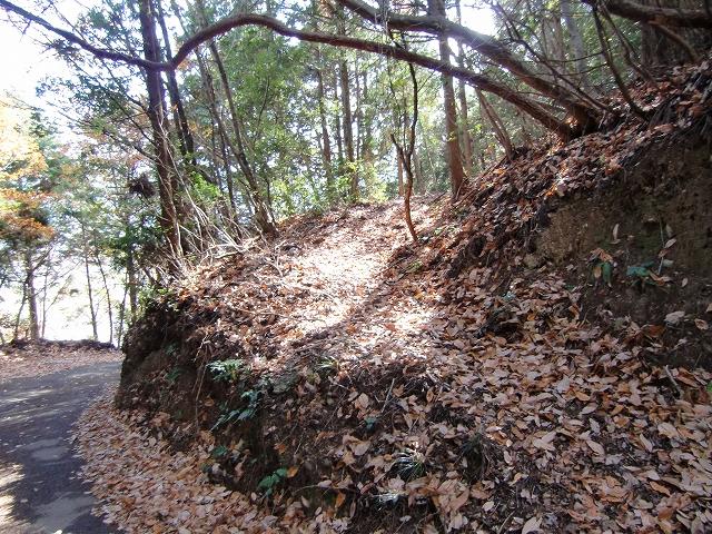 054東山城20111219 CIMG9054