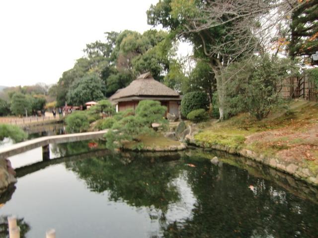 058岡山城20101130 CIMG5561