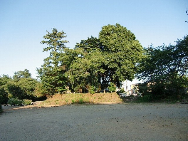135祇園城20110717 CIMG0516