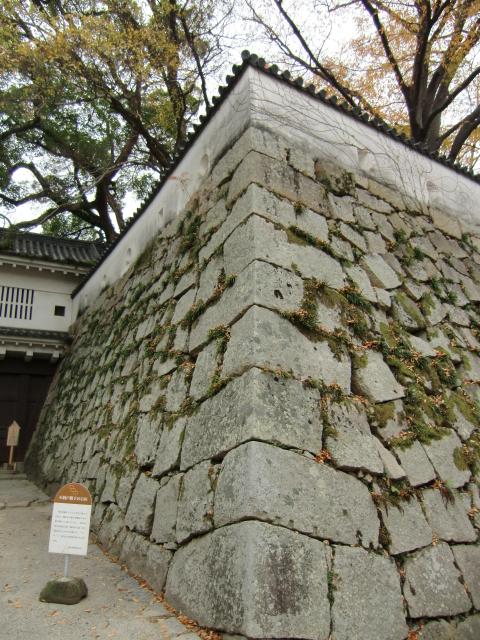058岡山城20101130 CIMG5481