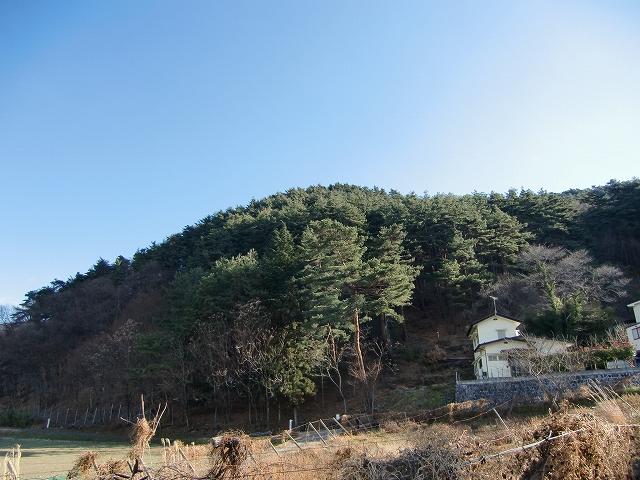 144林小城20131214 CIMG9430