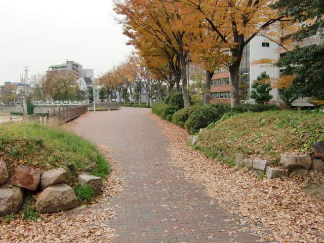 058岡山城20101130 CIMG5432