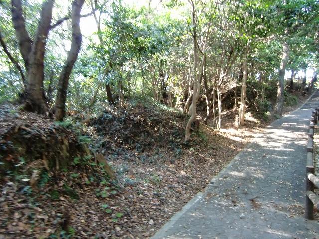 081浦戸城20111218 CIMG8674