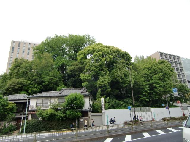 1323島原藩下屋敷20110430 CIMG7767