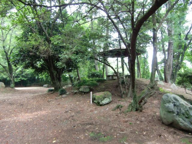 234久下田城20100626 CIMG7274